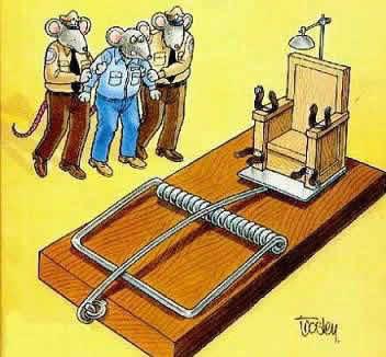Ratón condenado a muerte