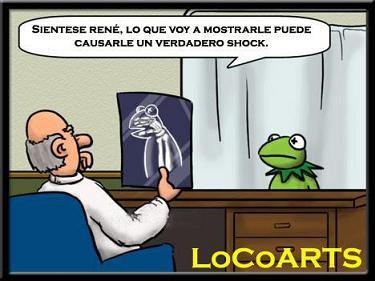 La radiografía a la rana