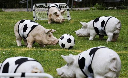 Hola Bar....-http://www.humor12.com/data/media/41/cerdos_futbolistas_www_humor12_com_www_Humor12_com.jpg